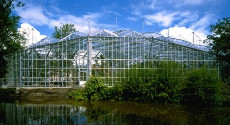hortus%20botanical%20gardens%20amsterdam.jpg