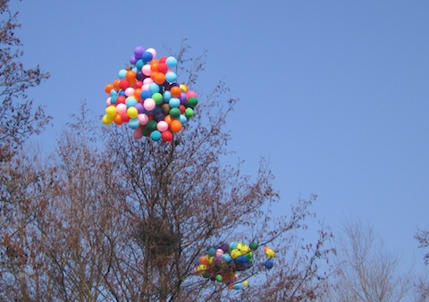ballons in a tree.jpg